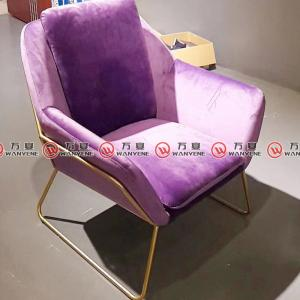 Purple velvet fabric leisure chair golden stainles...